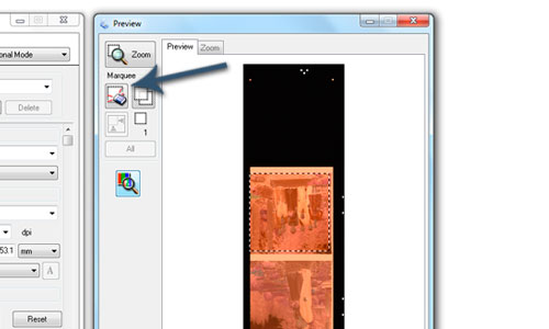 use marquee tool to crop negative scan