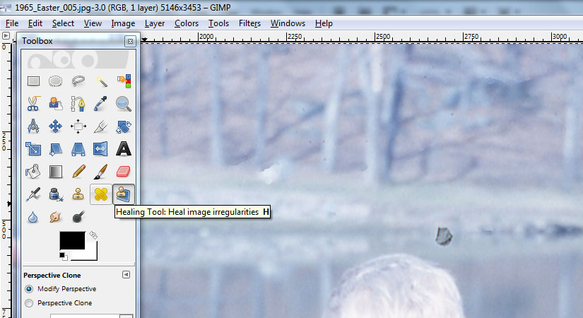 To fix dust and scratches from a negative scan use the Heal Tool in GIMP