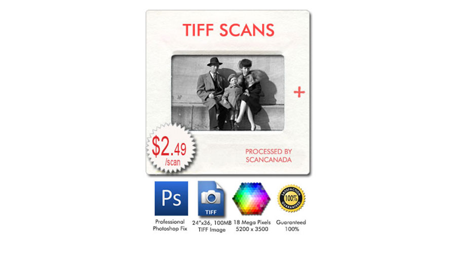 scanshop system, complete scan training program with lightroom, elements, gimp, photoshop, and coreldraw